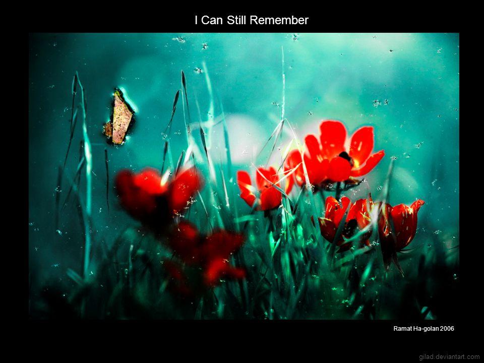 gilad.deviantart.com I Can Still Remember Ramat Ha-golan 2006
