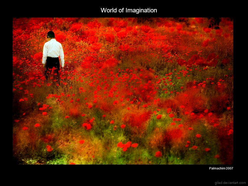 gilad.deviantart.com World of Imagination Palmachim 2007