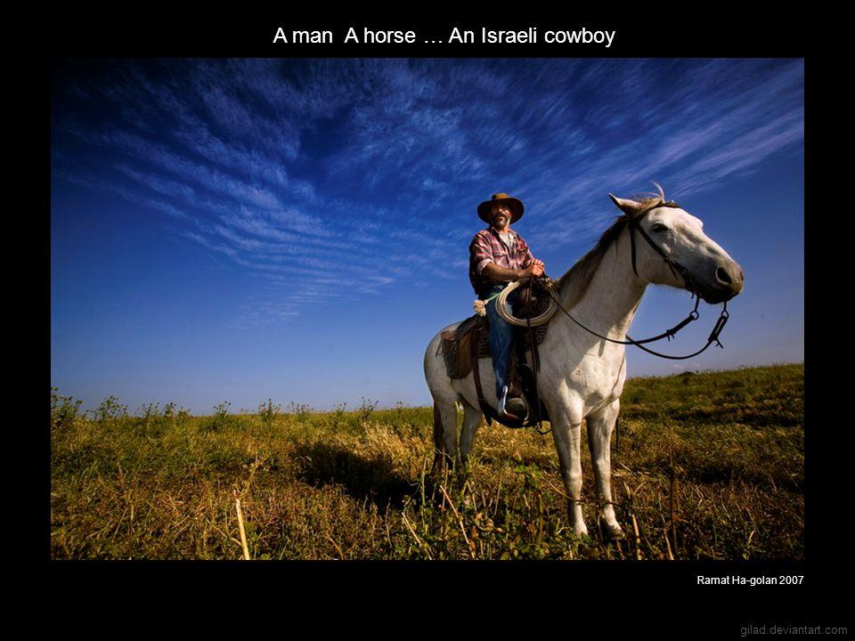 gilad.deviantart.com A man A horse … An Israeli cowboy Ramat Ha-golan 2007
