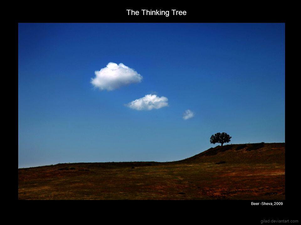 gilad.deviantart.com The Thinking Tree Beer -Sheva, 2009