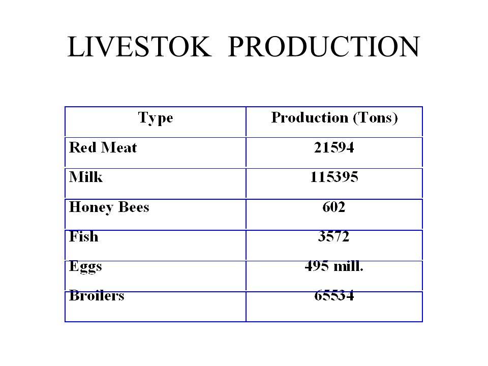 LIVESTOK PRODUCTION