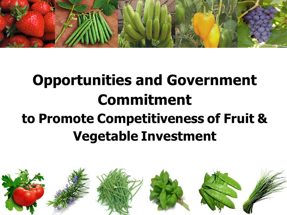 Opportunities and Government Commitment to Promote Competitiveness of Fruit & Vegetable Investment