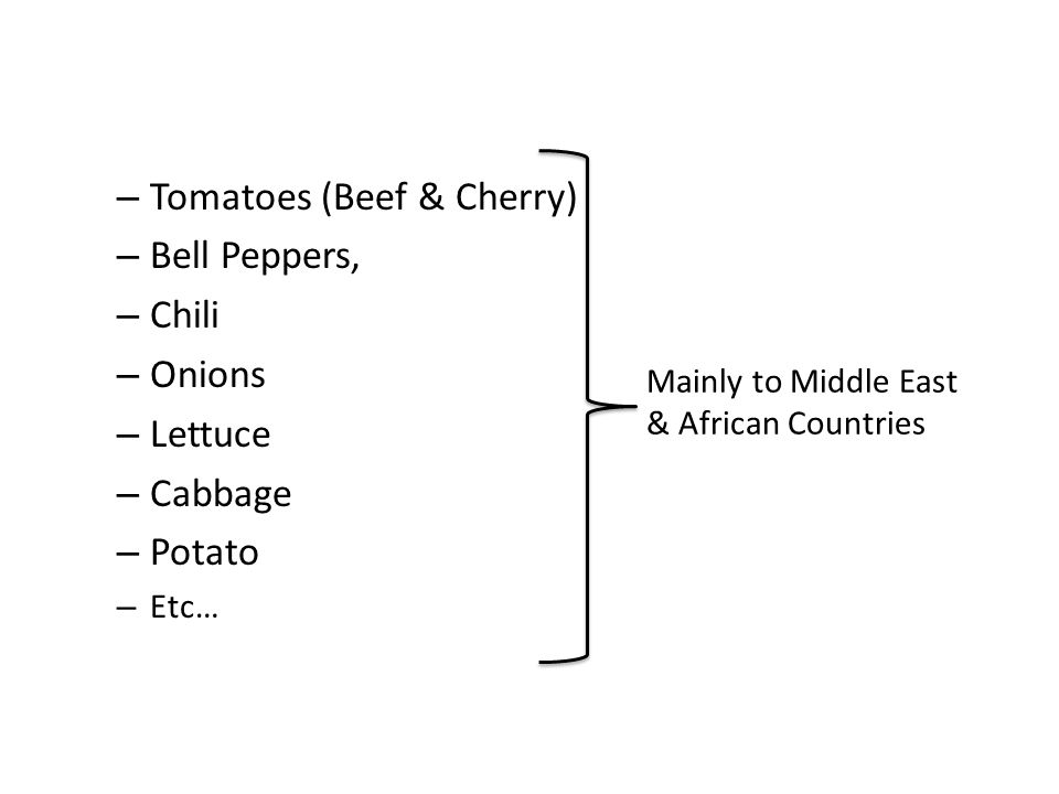 – Tomatoes (Beef & Cherry) – Bell Peppers, – Chili – Onions – Lettuce – Cabbage – Potato – Etc… Mainly to Middle East & African Countries