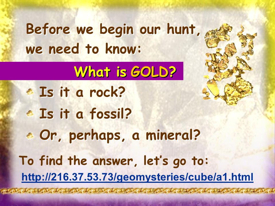 Before we begin our hunt, we need to know: Is it a rock? Is it a fossil? Or, perhaps, a mineral? Before we begin our hunt, we need to know: Is it a ro
