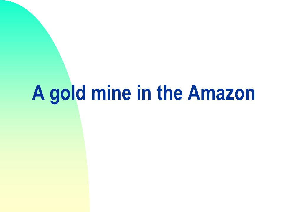 A gold mine in the Amazon