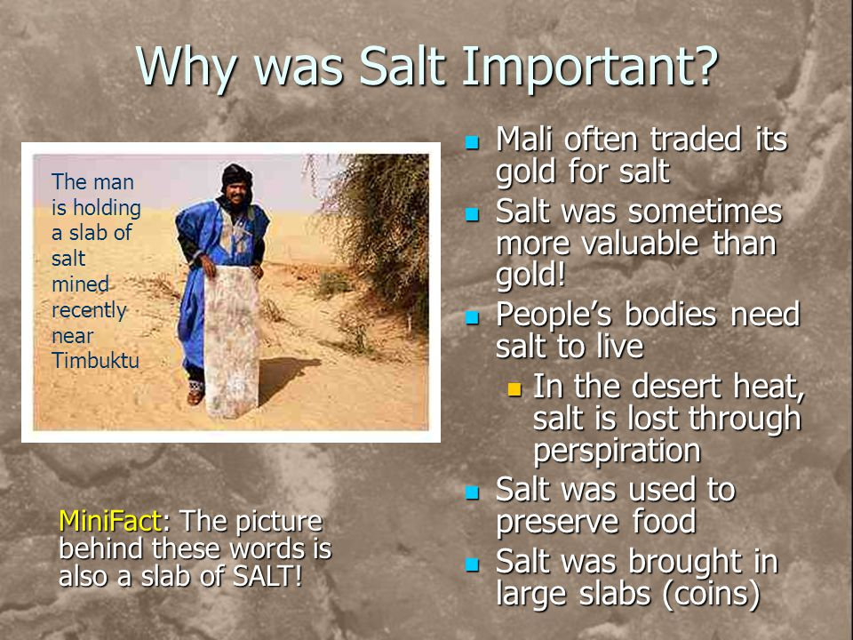 Why was Salt Important? Mali often traded its gold for salt Salt was sometimes more valuable than gold! Peoples bodies need salt to live In the desert