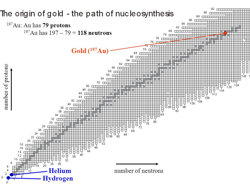 Gold ( 197 Au) Helium Hydrogen number of protons number of neutrons 197 Au: Au has 79 protons 197 Au has 197 – 79 = 118 neutrons