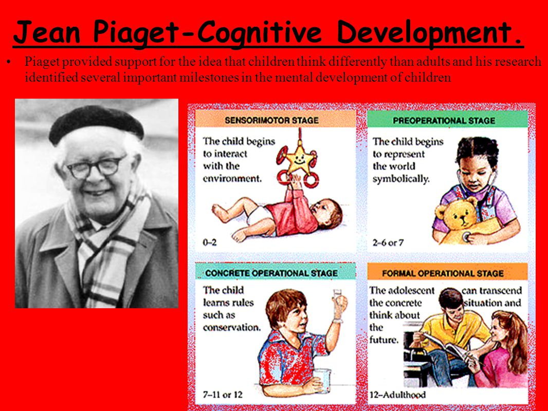 cognitive and moral development of children essay