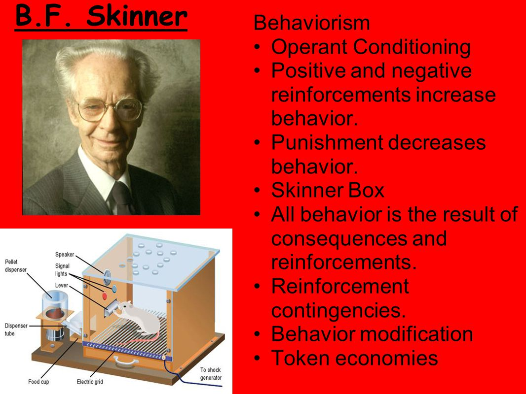 Solomon Asch Solomon Asch is considered a pioneer of social psychology and Gestalt psychology His conformity experiments demonstrated the power of social influence.