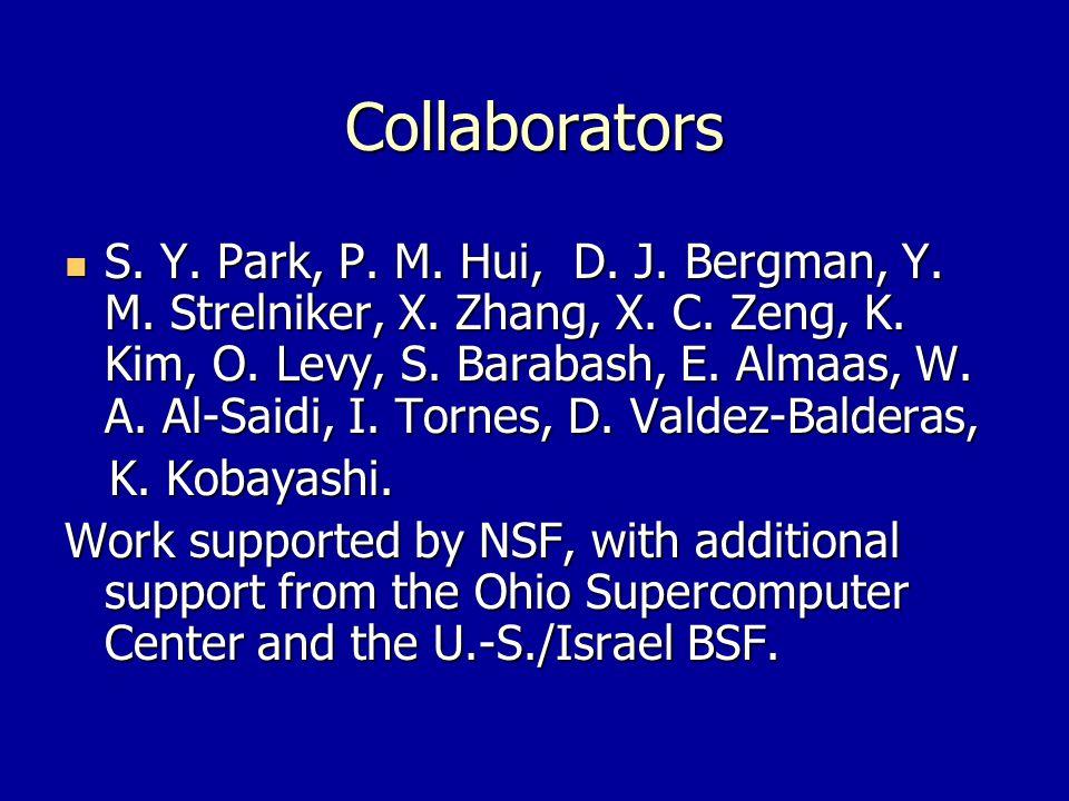 Collaborators S. Y. Park, P. M. Hui, D. J. Bergman, Y.