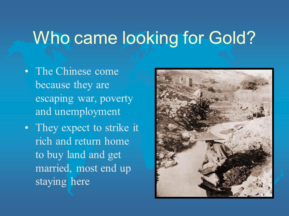 Who came looking for Gold? The Chinese come because they are escaping war, poverty and unemployment They expect to strike it rich and return home to b