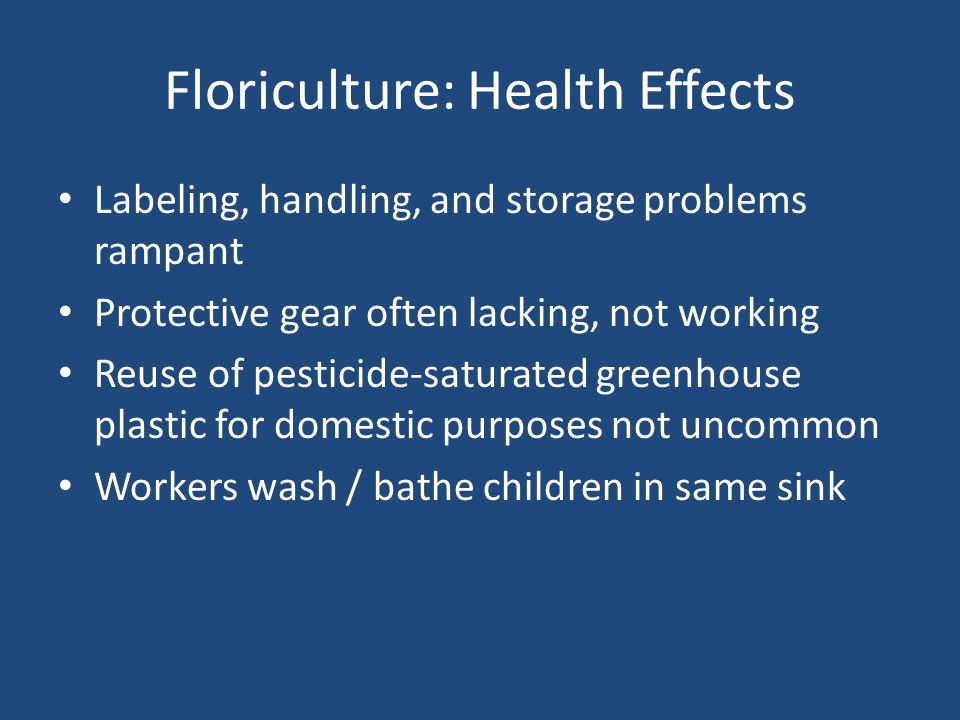 Floriculture: Health Effects Labeling, handling, and storage problems rampant Protective gear often lacking, not working Reuse of pesticide-saturated greenhouse plastic for domestic purposes not uncommon Workers wash / bathe children in same sink