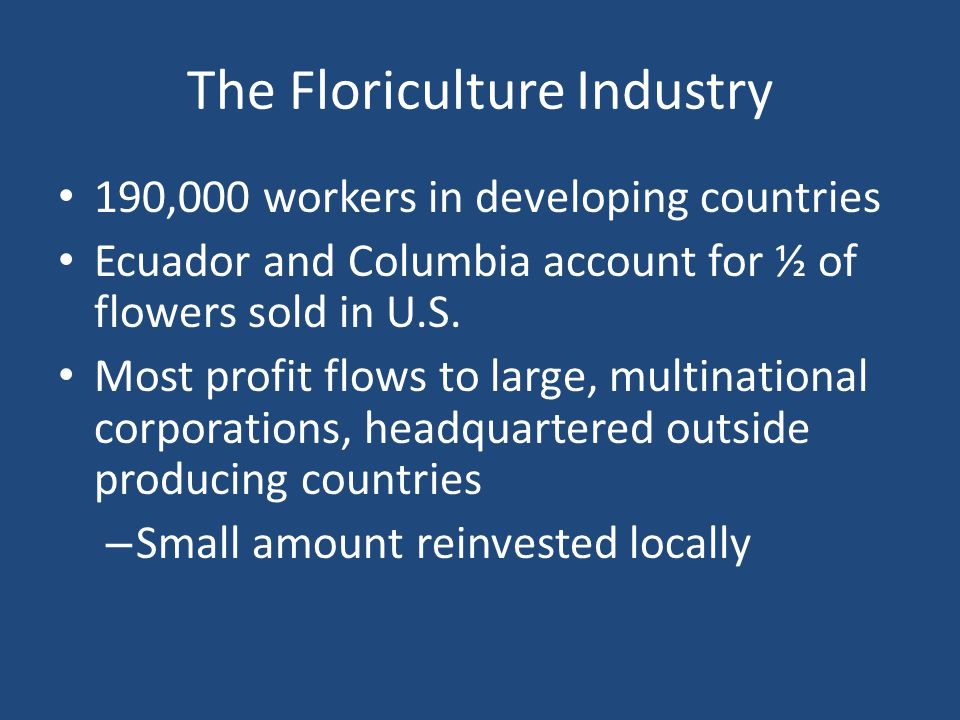 The Floriculture Industry 190,000 workers in developing countries Ecuador and Columbia account for ½ of flowers sold in U.S.