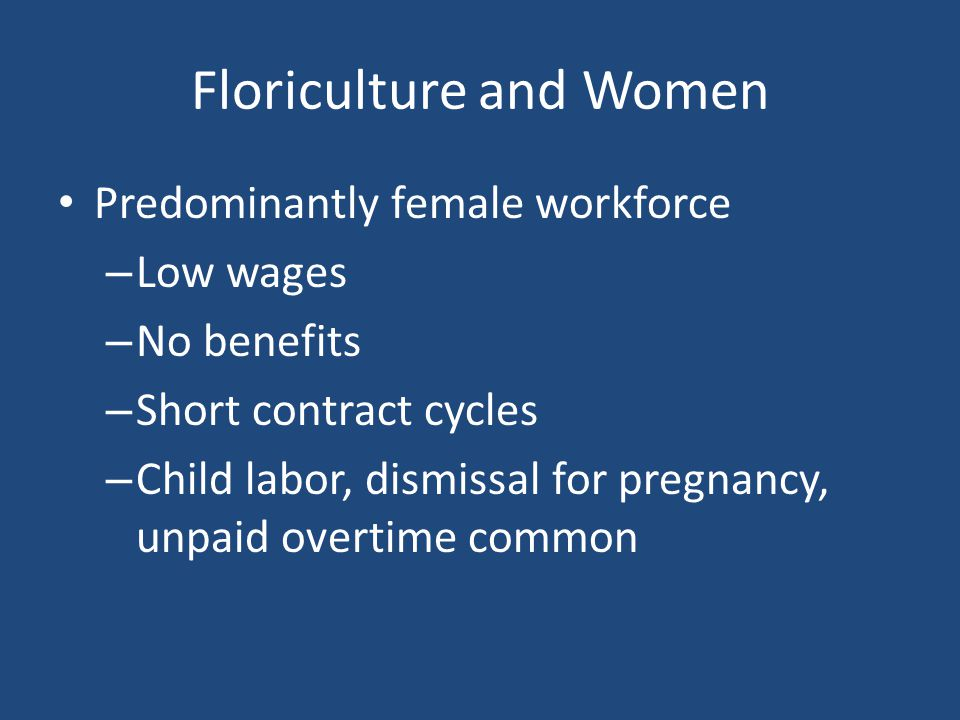 Floriculture and Women Predominantly female workforce – Low wages – No benefits – Short contract cycles – Child labor, dismissal for pregnancy, unpaid overtime common