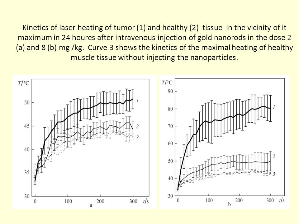 Kinetics of laser heating of tumor (1) and healthy (2) tissue in the vicinity of it maximum in 24 houres after intravenous injection of gold nanorods in the dose 2 (а) and 8 (b) mg /kg.