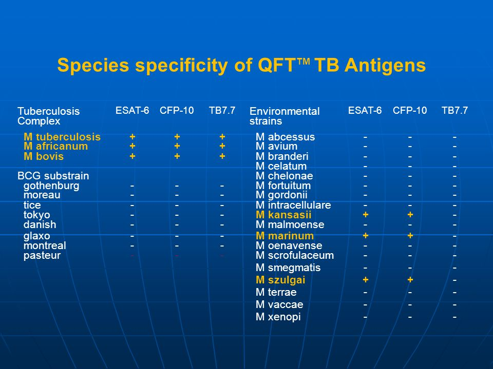 Species specificity of QFT TM TB Antigens Tuberculosis Complex ESAT-6CFP-10TB7.7 Environmental strains ESAT-6CFP-10TB7.7 M tuberculosis+++ M abcessus-