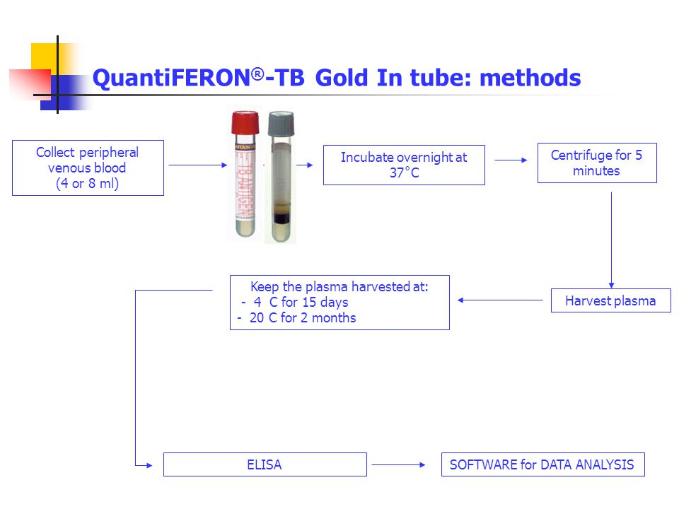 QuantiFERON ® -TB Gold In tube: methods Collect peripheral venous blood (4 or 8 ml) Harvest plasma Keep the plasma harvested at: - 4 C for 15 days - 2