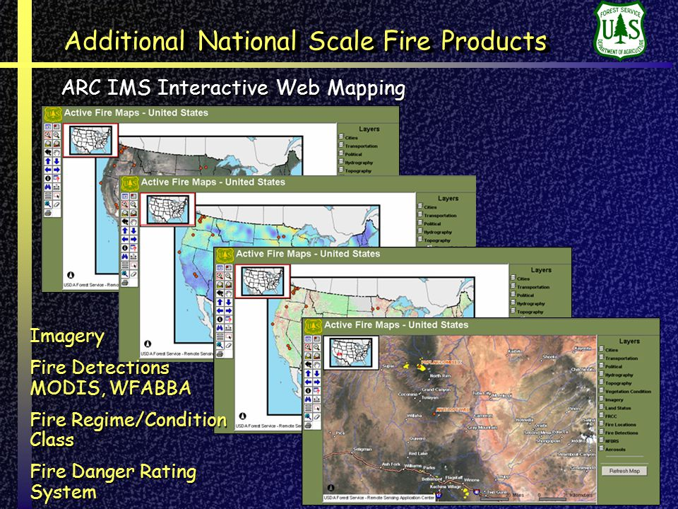 Additional National Scale Fire Products ARC IMS Interactive Web Mapping Imagery Fire Detections MODIS, WFABBA Fire Regime/Condition Class Fire Danger Rating System