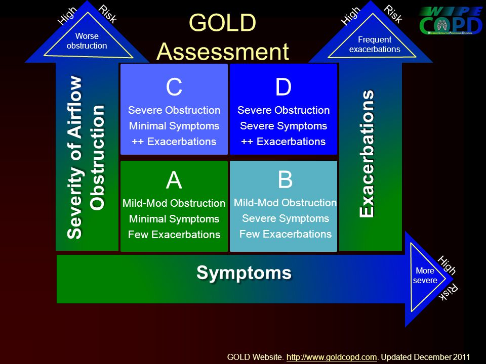 GOLD Assessment Severity of Airflow Obstruction Worse obstruction More severe Exacerbations Frequent exacerbations D Severe Obstruction Severe Symptoms ++ Exacerbations High Risk Symptoms C Severe Obstruction Minimal Symptoms ++ Exacerbations A Mild-Mod Obstruction Minimal Symptoms Few Exacerbations B Mild-Mod Obstruction Severe Symptoms Few Exacerbations GOLD Website.