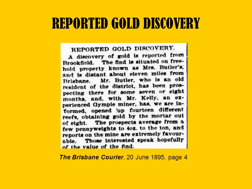 REPORTED GOLD DISCOVERY The Brisbane Courier, 20 June 1895, page 4
