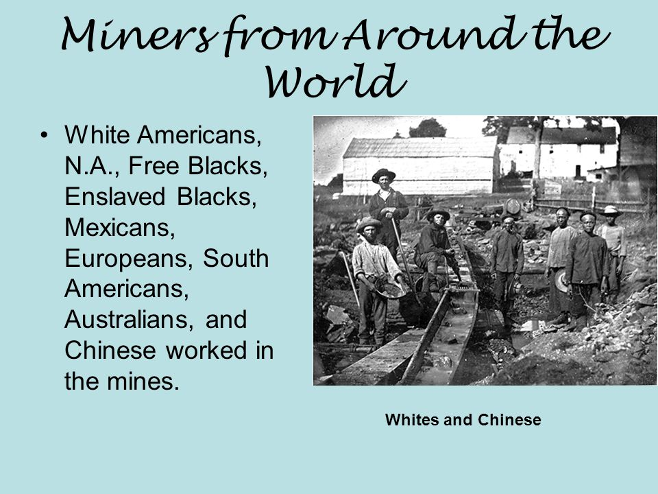 Miners from Around the World White Americans, N.A., Free Blacks, Enslaved Blacks, Mexicans, Europeans, South Americans, Australians, and Chinese worked in the mines.