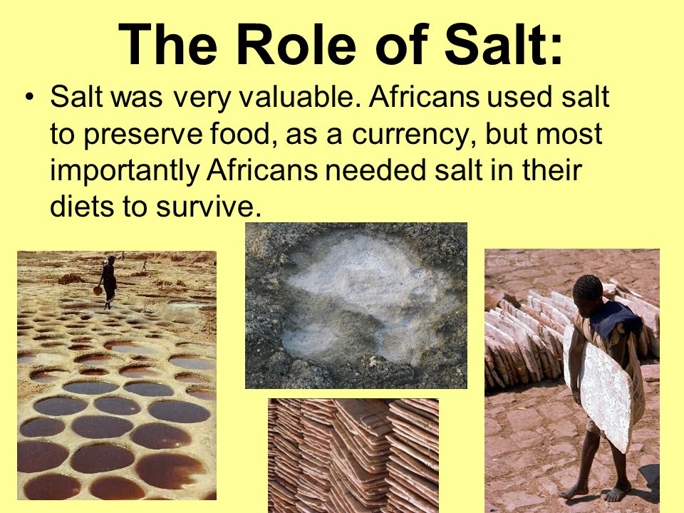 The Role of Salt: Salt was very valuable.