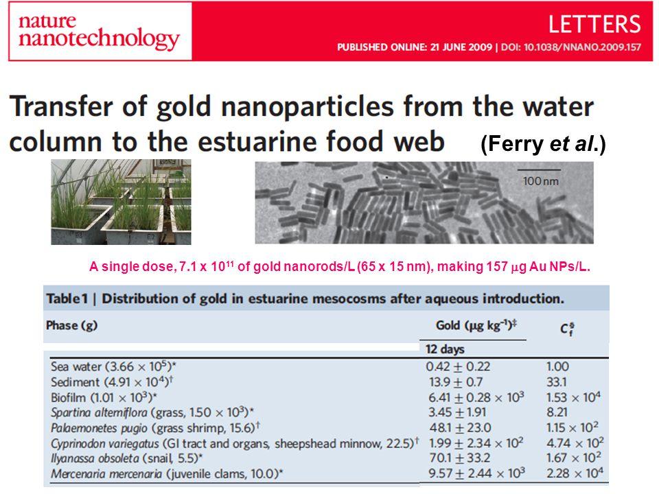 (Ferry et al.) A single dose, 7.1 x 10 11 of gold nanorods/L (65 x 15 nm), making 157 g Au NPs/L.