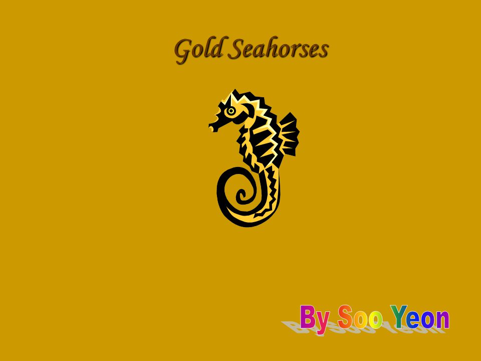 In this PowerPoint I will teach you about Gold Seahorses.