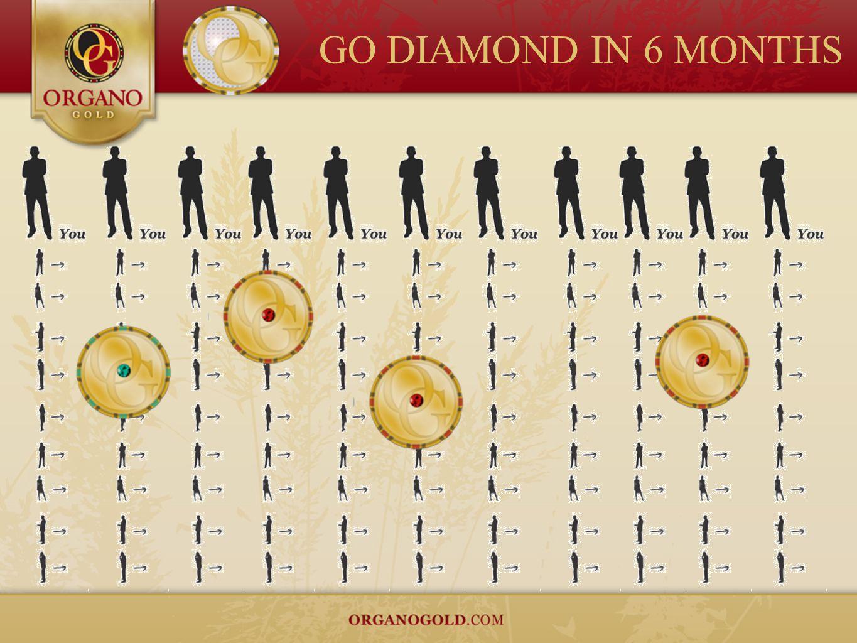 GO DIAMOND IN 6 MONTHS