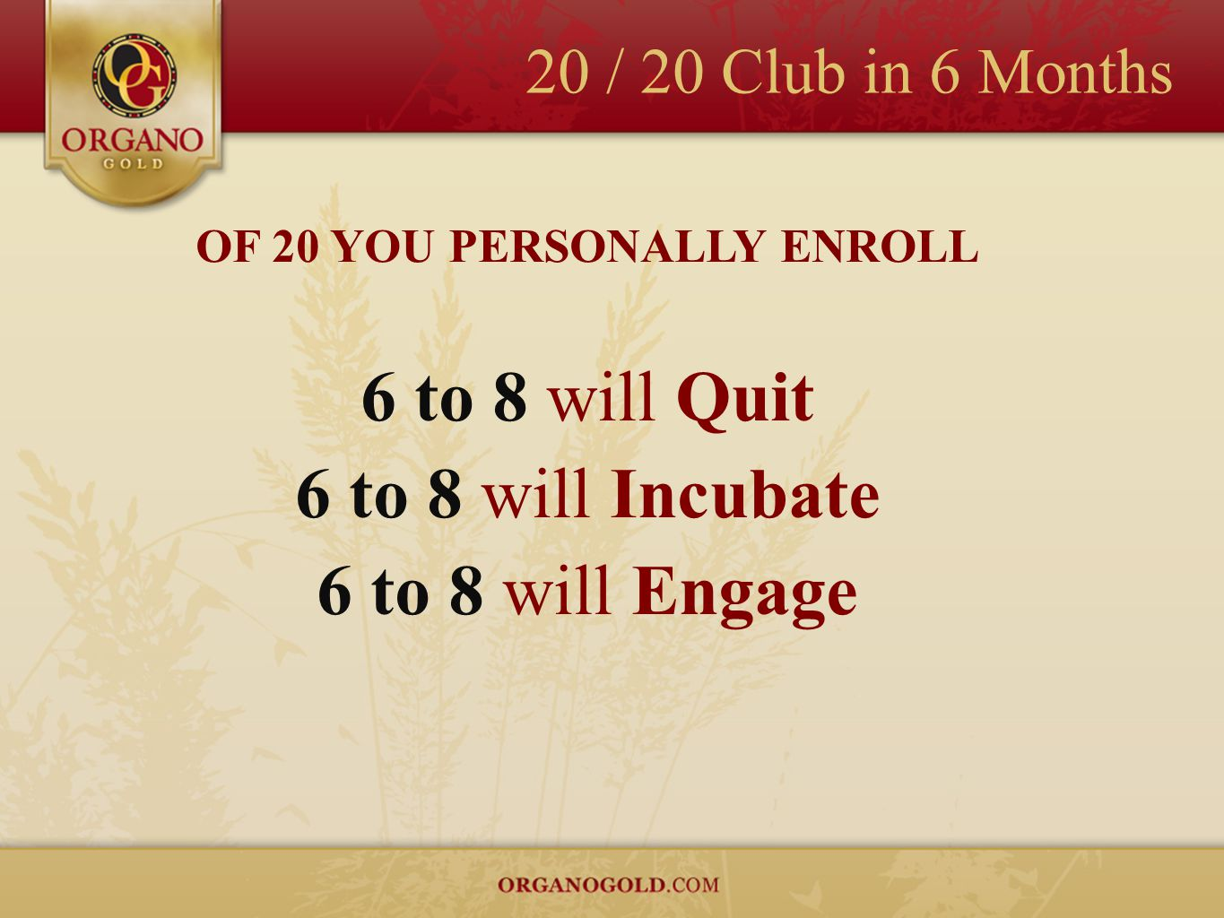20 / 20 Club in 6 Months OF 20 YOU PERSONALLY ENROLL 6 to 8 will Quit 6 to 8 will Incubate 6 to 8 will Engage