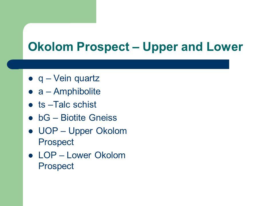 Okolom Prospect – Upper and Lower q – Vein quartz a – Amphibolite ts –Talc schist bG – Biotite Gneiss UOP – Upper Okolom Prospect LOP – Lower Okolom Prospect