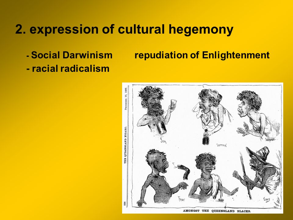 2. expression of cultural hegemony - Social Darwinism repudiation of Enlightenment - racial radicalism