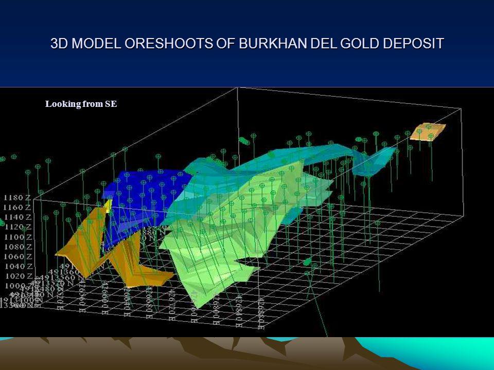 3D MODEL ORESHOOTS OF BURKHAN DEL GOLD DEPOSIT Looking from SE