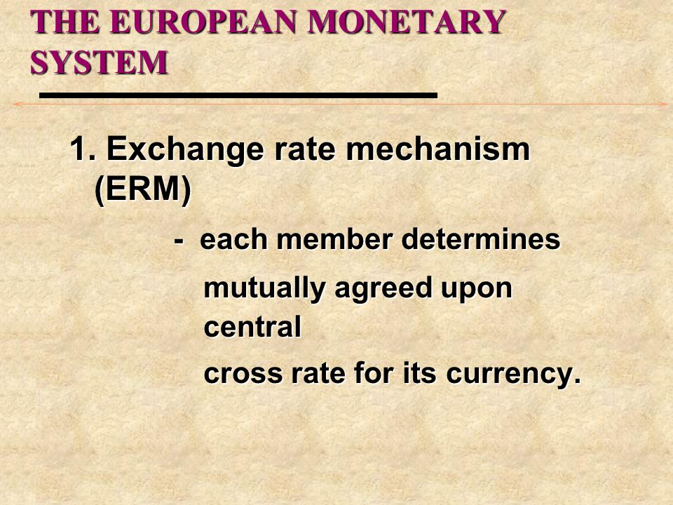 THE EUROPEAN MONETARY SYSTEM 1.