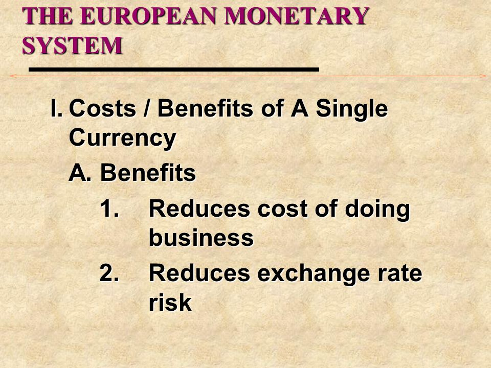 THE EUROPEAN MONETARY SYSTEM I.Costs / Benefits of A Single Currency A.