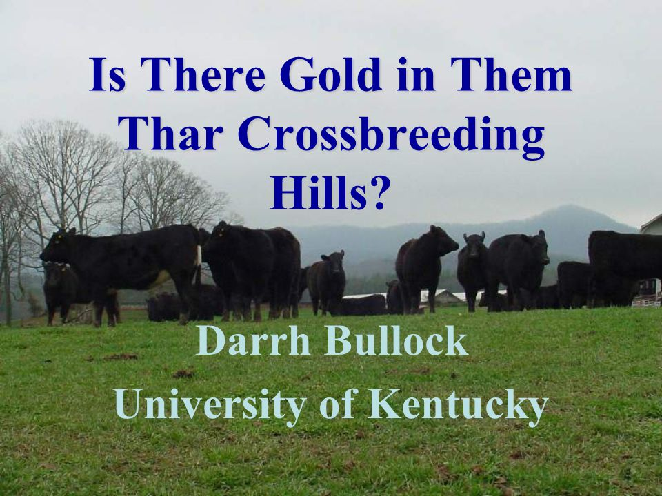 Is There Gold in Them Thar Crossbreeding Hills Darrh Bullock University of Kentucky