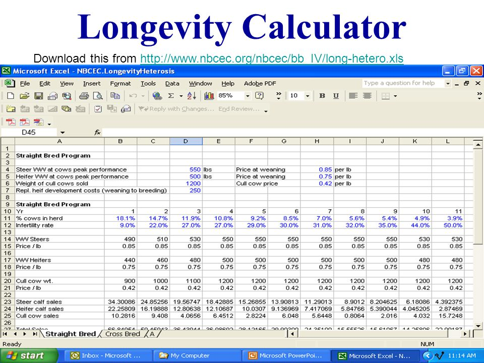 Longevity Calculator Download this from http://www.nbcec.org/nbcec/bb_IV/long-hetero.xlshttp://www.nbcec.org/nbcec/bb_IV/long-hetero.xls