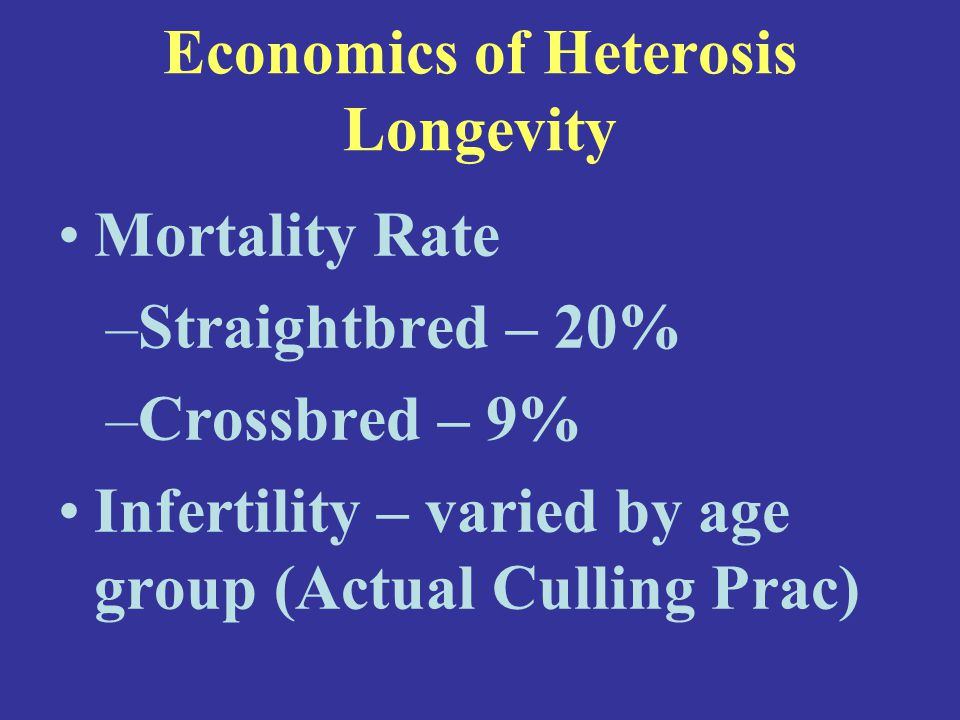 Economics of Heterosis Longevity Mortality Rate –Straightbred – 20% –Crossbred – 9% Infertility – varied by age group (Actual Culling Prac)