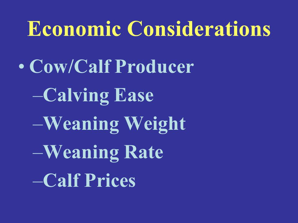 Economic Considerations Cow/Calf Producer –Calving Ease –Weaning Weight –Weaning Rate –Calf Prices