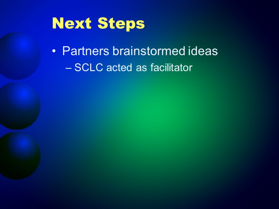 Next Steps Partners brainstormed ideas –SCLC acted as facilitator