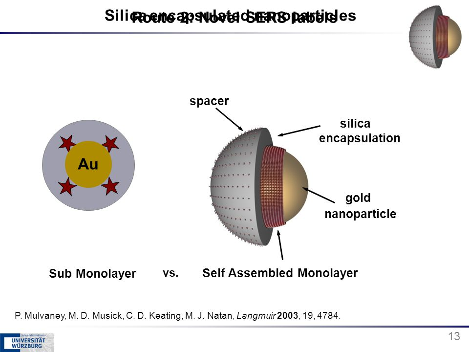 Route 2: Novel SERS labels gold nanoparticle spacer Self Assembled Monolayer silica encapsulation 13 P. Mulvaney, M. D. Musick, C. D. Keating, M. J. N