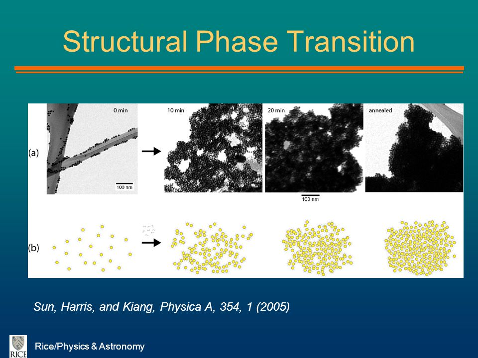Rice/Physics & Astronomy Structural Phase Transition Sun, Harris, and Kiang, Physica A, 354, 1 (2005)