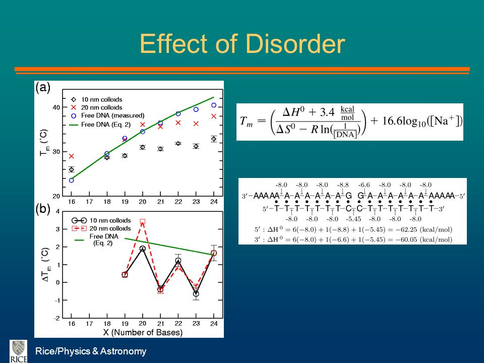 Rice/Physics & Astronomy Effect of Disorder