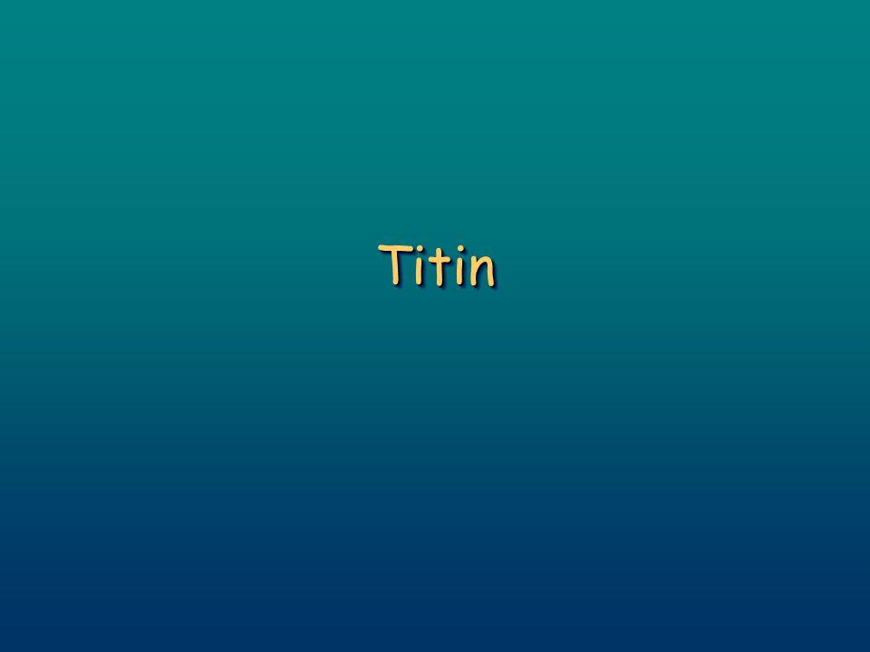 TitinTitin