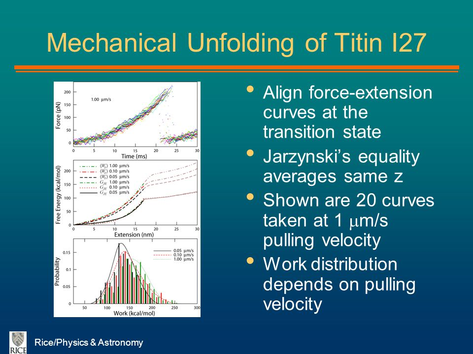 Rice/Physics & Astronomy Mechanical Unfolding of Titin I27 Align force-extension curves at the transition state Jarzynskis equality averages same z Sh