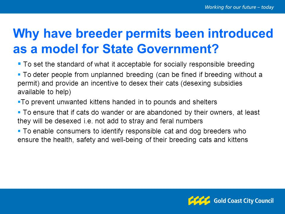 Why have breeder permits been introduced as a model for State Government? To set the standard of what it acceptable for socially responsible breeding