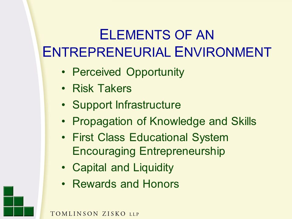 E LEMENTS OF AN E NTREPRENEURIAL E NVIRONMENT Perceived Opportunity Risk Takers Support Infrastructure Propagation of Knowledge and Skills First Class Educational System Encouraging Entrepreneurship Capital and Liquidity Rewards and Honors
