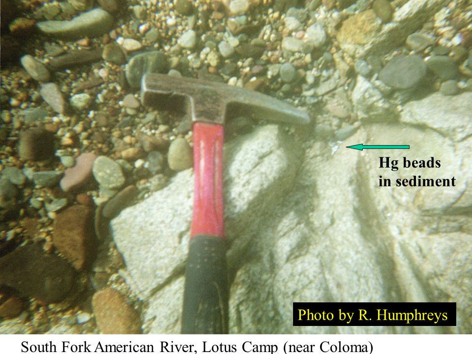 USGS Fact Sheet 2005-3014 Mercury Loss to the Environment in Hydraulic Mining