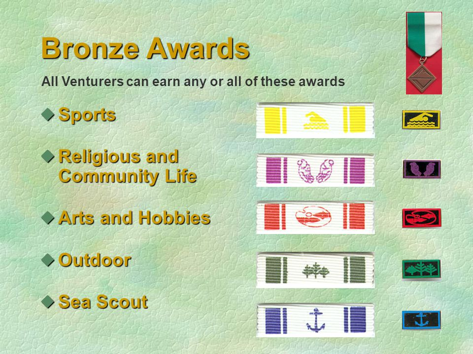 Bronze Awards uSports uReligious and Community Life uArts and Hobbies uOutdoor uSea Scout All Venturers can earn any or all of these awards