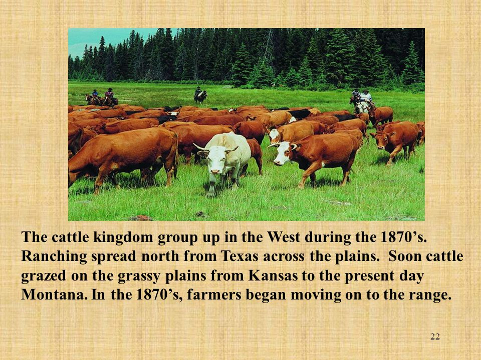 22 The cattle kingdom group up in the West during the 1870s. Ranching spread north from Texas across the plains. Soon cattle grazed on the grassy plai